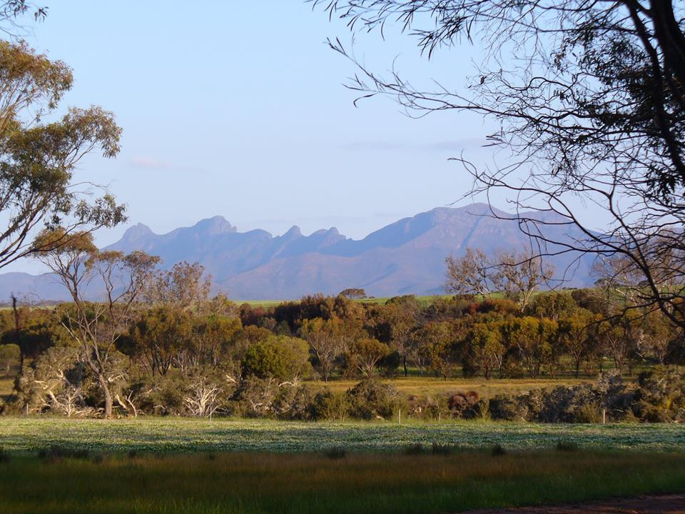 Stirling Ranges Camp
